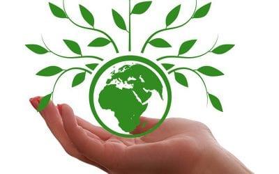 Offentlig upphandling för minskad klimatpåverkan